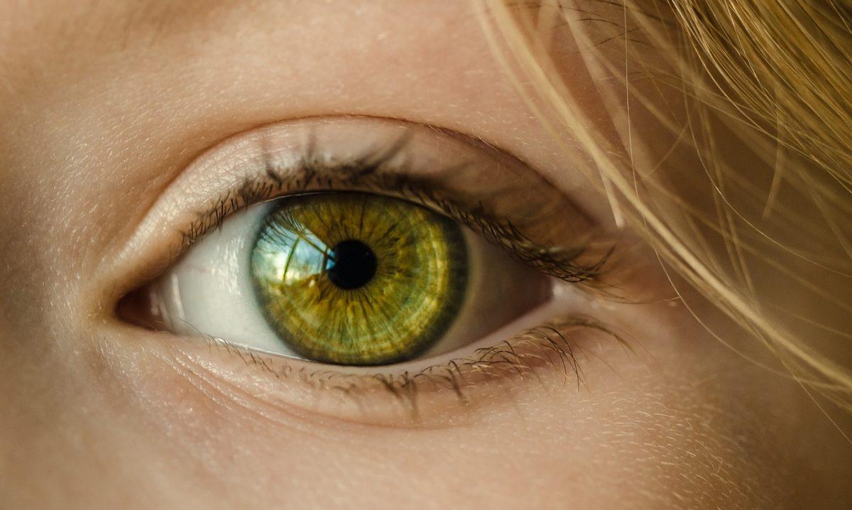 Oczy to wyrafinowany narząd. To otóż to dzięki nim widzimy.